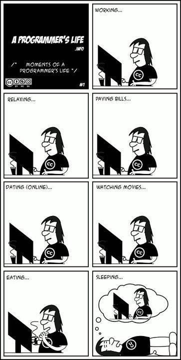 programmerslife
